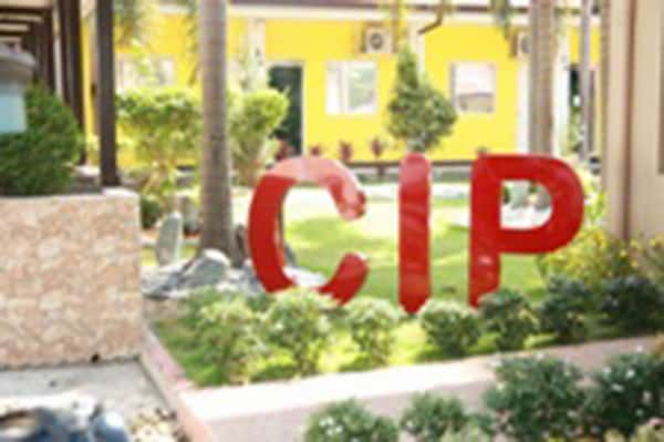 CIP-feature
