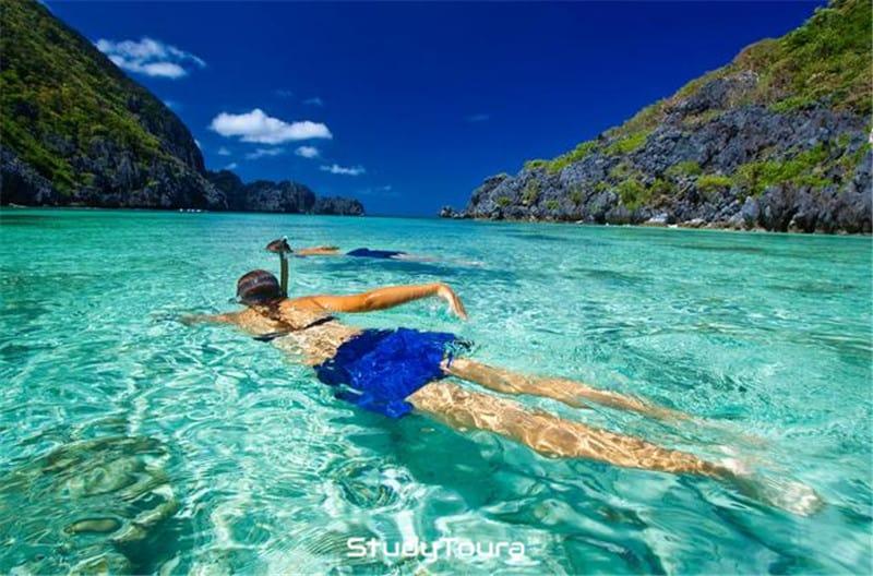 菲律宾潜水攻略