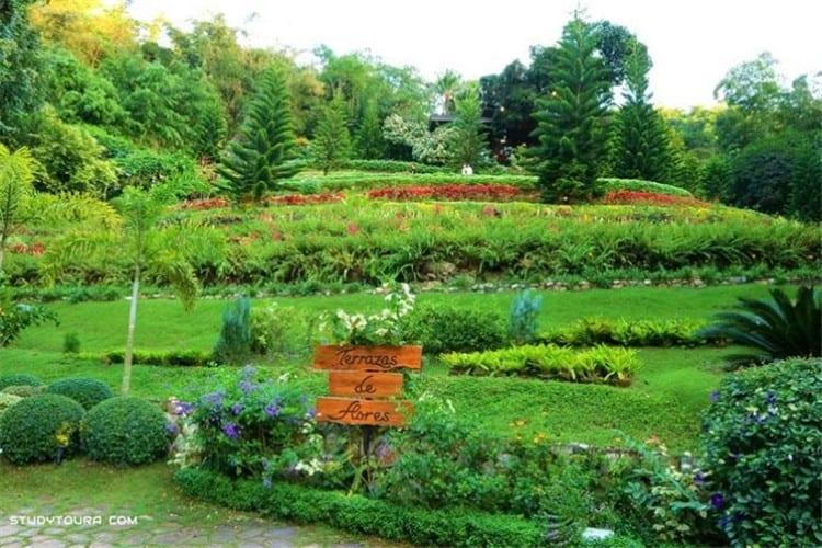 Terrazas de Flores