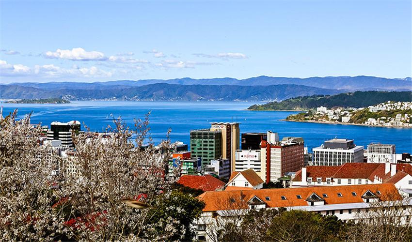 为什么选择新西兰游学 - 8