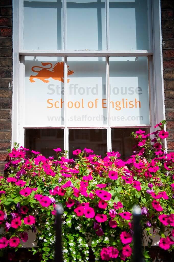 Stafford House伦敦 (9)